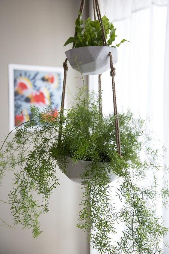 jardineras colgantes ellis double hanging planter