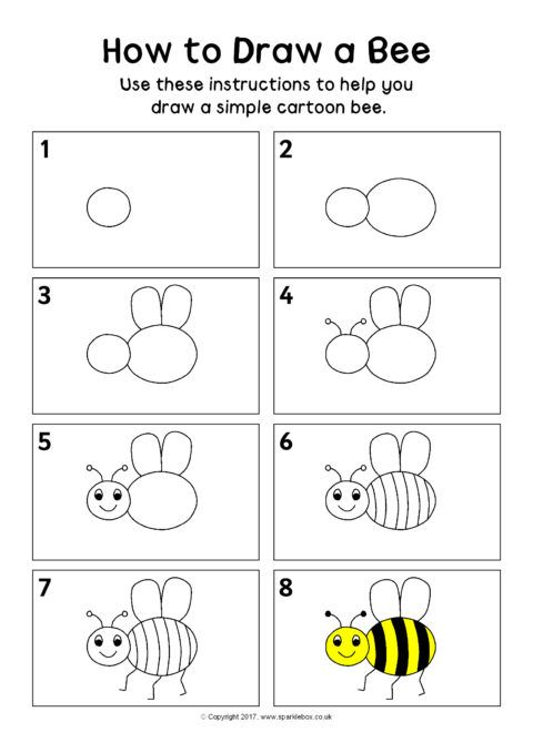 How to Draw a Bee Instructions Sheet (SB12296) - SparkleBox