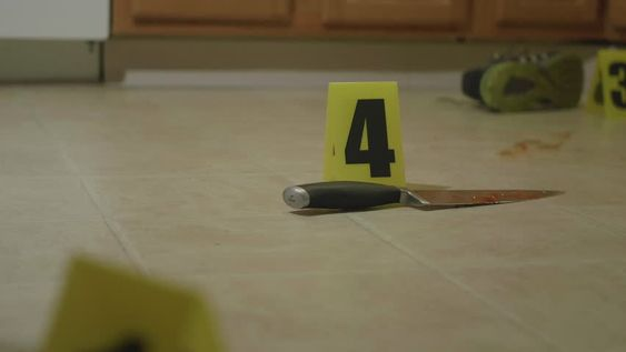 Krijg crime scene in home kitchen. stockbeeldmateriaal van 7.000 seconden bij 23.98fps. Video's direct beschikbaar in 4K en HD voor elke NLE. Kies uit een gevarieerd aanbod van vergelijkbare scènes. Videoclip-ID 16313719. Download meteen beeldmateriaal.