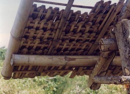 Bamboo Shingles -Bambusa blumeana (B. spinosa) - Bamboo Arts and Crafts Gallery: