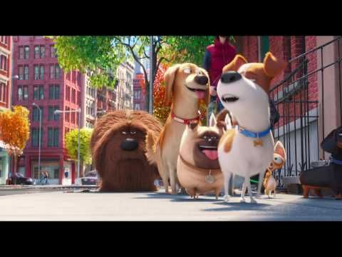 The Secret Life Of Pets Trailer Youtube