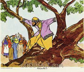 Jésus, ami de Zachée