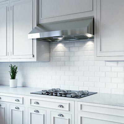 Xo Appliance 24 Professional 600 Cfm Ducted Under Cabinet Range Hood Wayfair In 2020 Kitchen Range Hood Under Cabinet Range Hoods Range Hood
