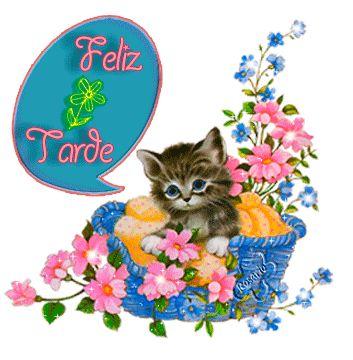 Hermoso gatito con flores para desearte una Feliz Tarde