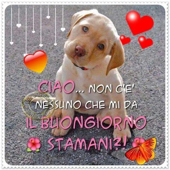 Ciaooo: