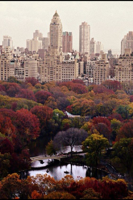 NYC in the fall #NYC #BestCity