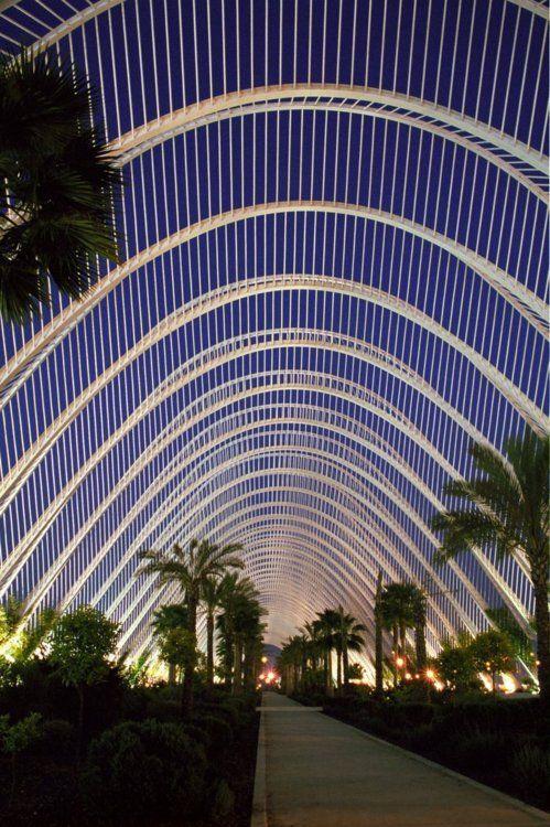 Ciutat de les Arts i de les Ciències .València, Spain