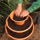 DIY STRAWBERRY POT.  This is a great idea for annuals, herbs, and just about any plant or flower the drapes over the pot.  Try using pots that don't exactly match but provide interest. Yard sales are good place to find pots.