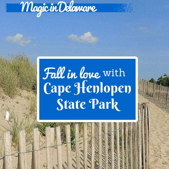 Cape Henlopen State Park has everything your family wants in a summer vacation hot spot - sand, surf, trails, wildlife, history, and a cool beach town.