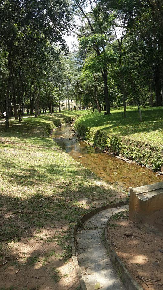 jardin botanico leblon