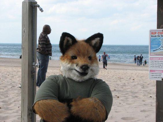 Realistic Fox Costume by MichaelReynard