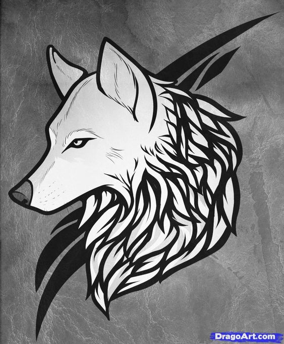 Wolf Line Drawing Tattoo : How to draw a wolf tattoo step by