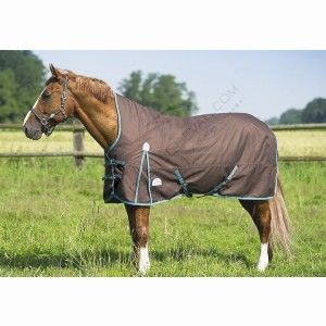 The Equi Theme Tyrex High Neck Lightweight Turnout Rug Is A Performance Made In 1200 Deniers Ripstop Polyester With Taped Seams Offering