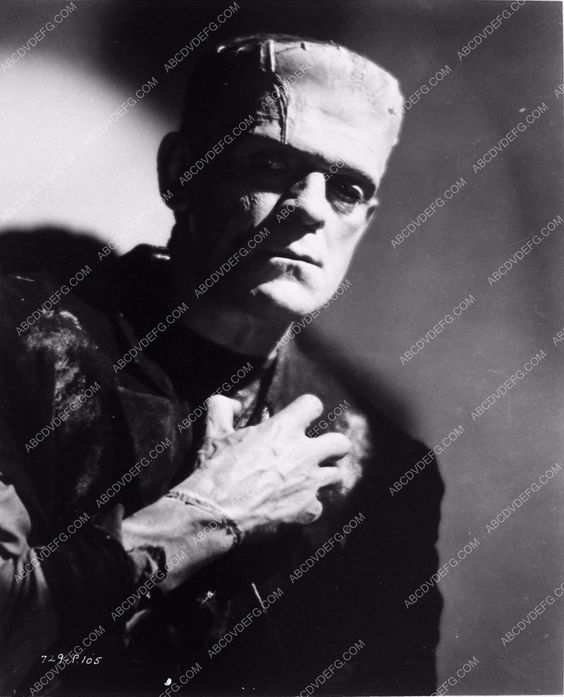 photo Boris Karloff film the Bride of Frankenstein 3266-27