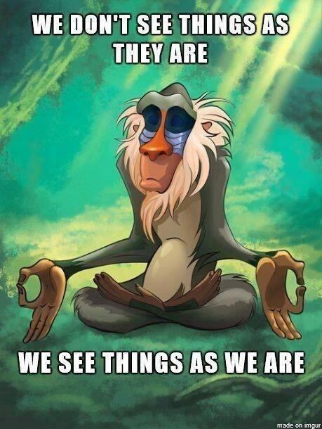 We See things as WE Are. True Logic monkey logic
