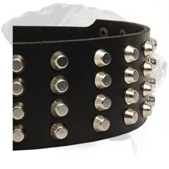 Fashionable #Rottweiler #Leather #Dog #Collar $59.90 | www.all-about-rottweiler-dog-breed.com