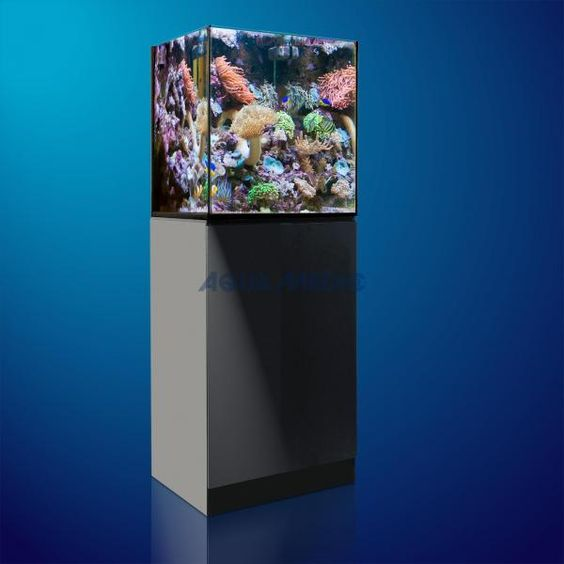 Aqua Medic Xenia 65 Meerwasseraquarium 195L - Ein weiteres neues innovatives Meerwasser Aquarium aus der Aqua Medic Xenia Serie. Das hochwertig designte Aquarium kommt zusammen mit einem ebenso hochwertigen Unterschrank und einem kompletten Glas - Filterbecken inklusive einer Rückförderpumpe