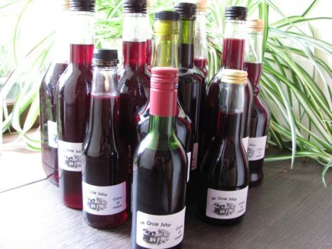 Learn French in context - make blackcurrant liqueur with Suzanne http://www.frenchtoday.com/blog/blackcurrant-kir-french-drink-vocabulary-bilingual-story