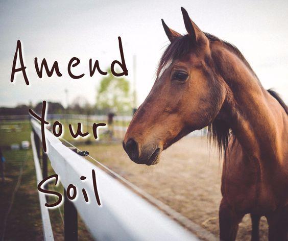 Somervell County Master Gardener Association Newsletter: Amending Your Soil