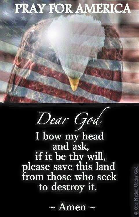 Lord we need you desperately to heal our land and protect us from this evil enemy within!: