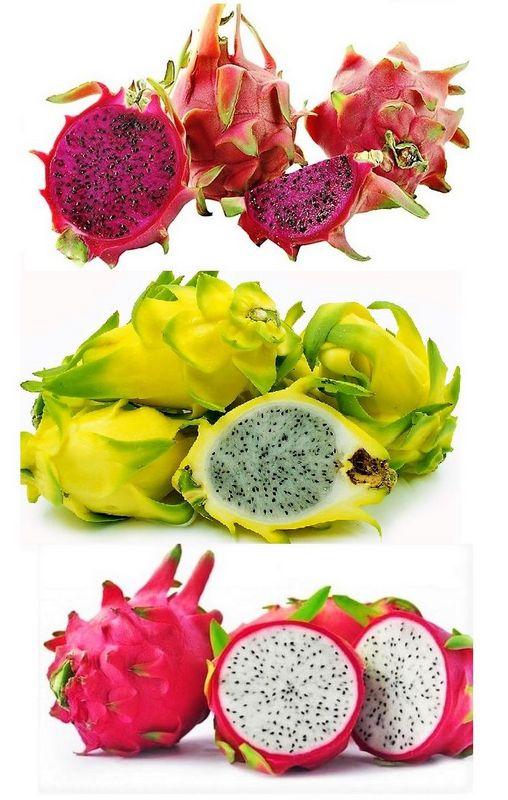 pitaya colombia Gastronomía Colombiana