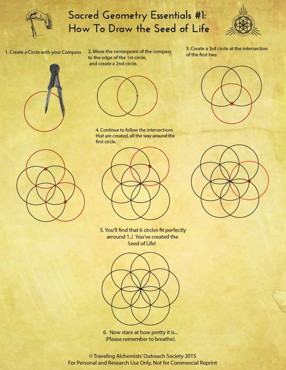 How to draw the seed of life. Sacred Geometry: