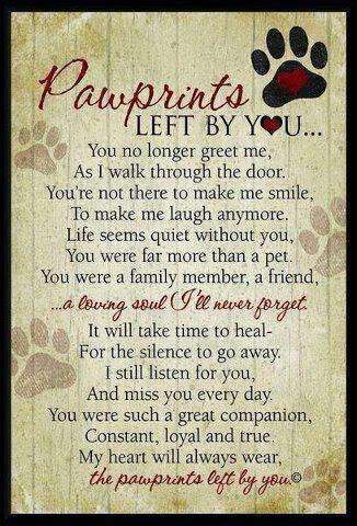 rainbow bridge poem for dogs - Google Search: