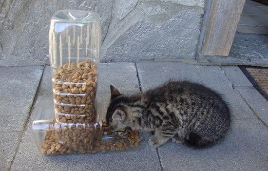 Diy เคร องให อาหารน องแมวจากขวดโหล ย ยกะท ไม ได อย ในกระทะ Pet Food Dispenser Food Animals Diy Stuffed Animals