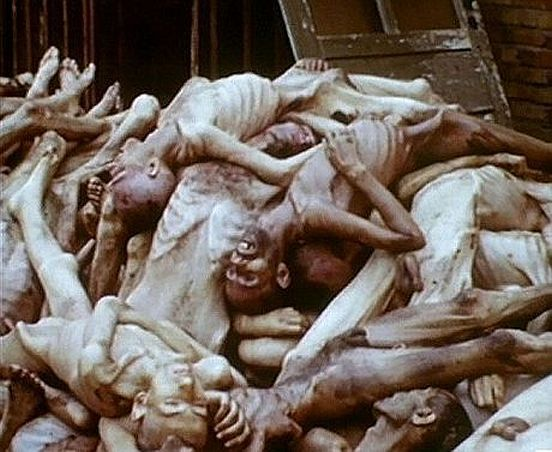Image result for holocaust horror