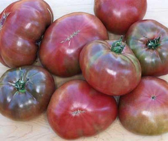 http://www.ebay.com/itm/10-15-CARBON-Tomato-Seeds-Premium-USA-Heirloom-/281370486026?pt=LH_DefaultDomain_0  10-15 CARBON Tomato Seeds. Premium USA Heirloom