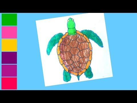 Turtles Pictures To Colour Turtle Coloring Pages Colorful Pictures Drawing For Kids