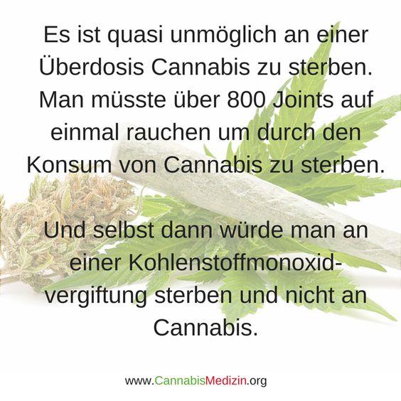 So viel zu dem Thema, dass Cannabis eine schlimme Droge sei. Hanf Hemp Weed Medizin