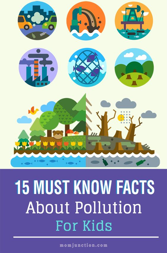 Pollution Facts For Kids - Everything You Should Know ...