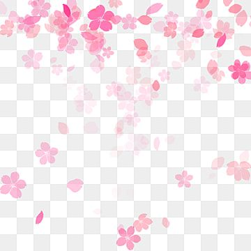 Pink Peach Vector Pink Peach Blossom Flower Png Transparent Image And Clipart For Free Download Anime Cherry Blossom Cherry Blossom Background Cherry Blossom Petals