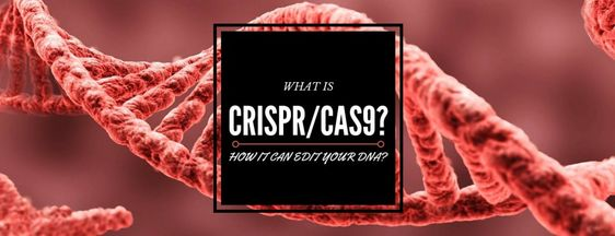 Scientists have invented an innovative Technology, which will be helpful for eliminating our diseases easily and quickly by altering our DNA found in Human Body. This technique is named as CRISPR G…