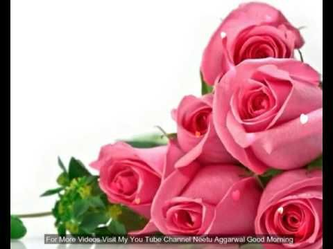 Youtube Beautiful Rose Flowers Rose Flower Wallpaper Beautiful Flowers Wallpapers