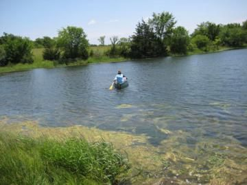 Pond tips living the country life great tips for for Pond fishing tips