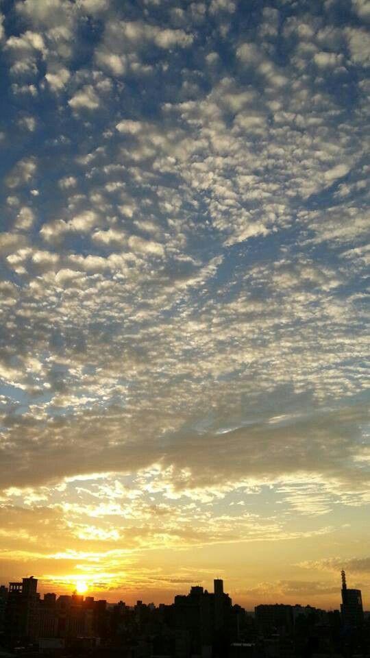 漫步在雲端。今天的夕照。20130624。