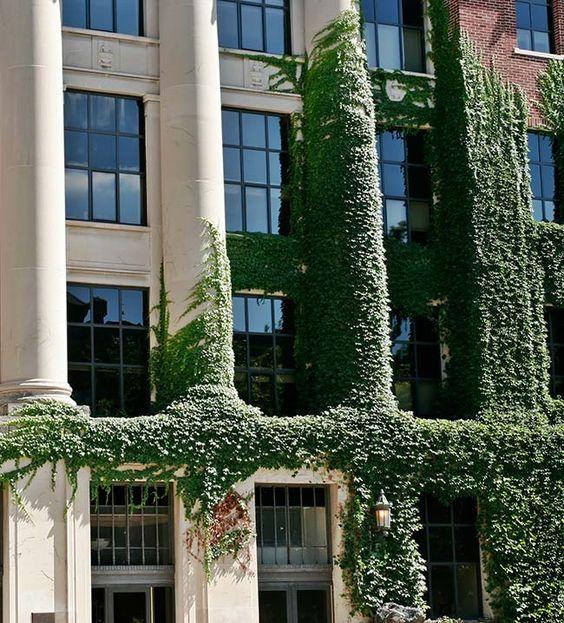 Ivy League | Nábytek a doplňky vybrané stylistkami Westwing