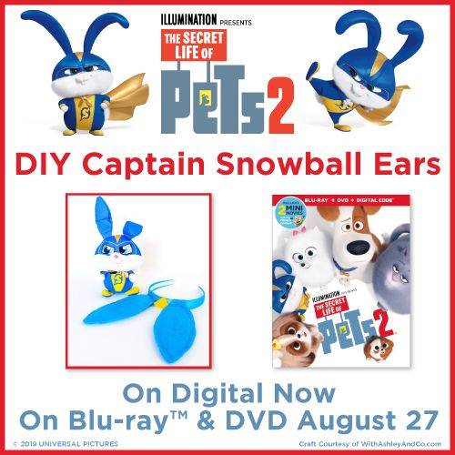 Secret Life Of Pets 2 Diy Fun With Captain Snowball Secret Life Of Pets Secret Life Fun Diys