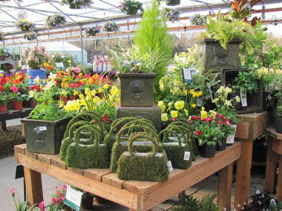 Garden center displays display ideas and display on pinterest for Garden center designs