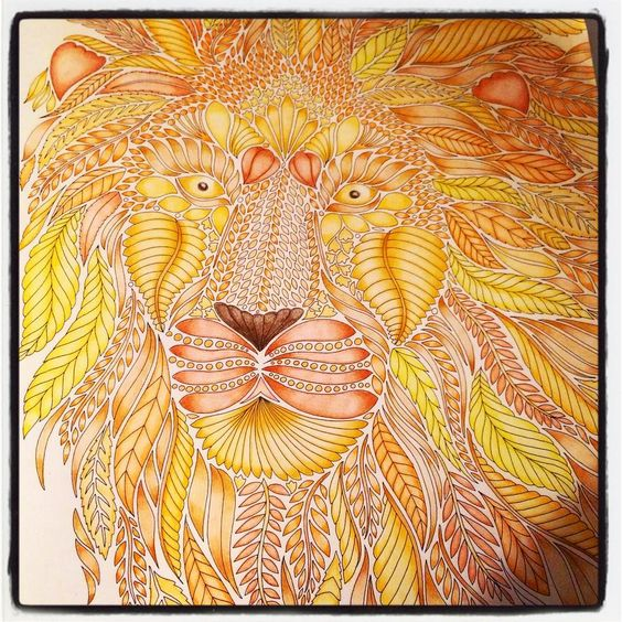 Finished my lion, messed up the nose  #lion #adultcolouring #adultcoloringbooks #colouringbook #colouring #milliemarotta #wildsavannah @milliemarotta