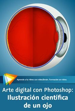 Arte digital con Photoshop: Ilustración científica de un ojo