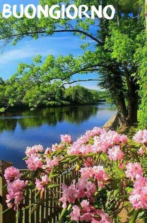 Saraseragmail Com Buongiorno Immagini Della Natura Paesaggi Fotografia Della Natura
