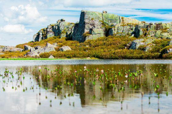 Photograph Lagoacho das Favas by António José Calixto Santos on 500px,  Serra da Estrela, Portugal