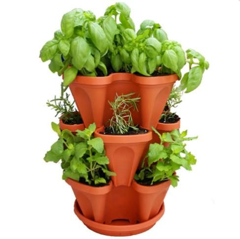 Stackable Strawberry Herb Flower And Vegetable Planter Vertical Garden Indoor Outdoor Https App Herb Garden Pots Vertical Herb Garden Stackable Planters