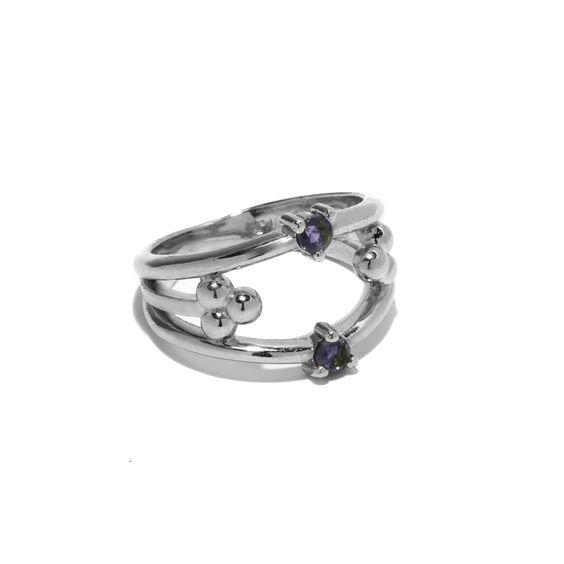 Polar Ring