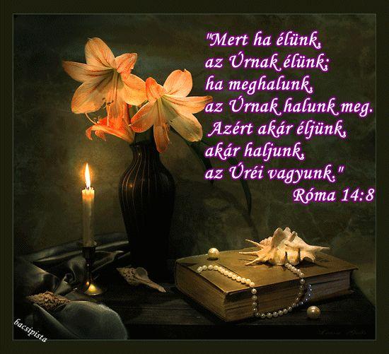 Mert ha élünk, az Úrnak élünk: ha meghalunk, az Úrnak halunk meg. Ezért akár élünk, akár meghalunk, az Úréi vagyunk. Mert azért halt meg és elevenedett meg Krisztus, hogy mind a holtakon, mind az élőkön uralkodjék. Róma 14:8,