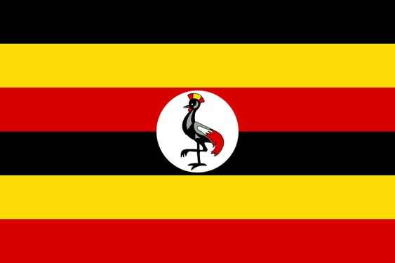 Uganda: grulla real gris.