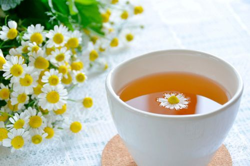 Trà hoa cúc la mã có lợi ích gì cho các mẹ đang mang thai